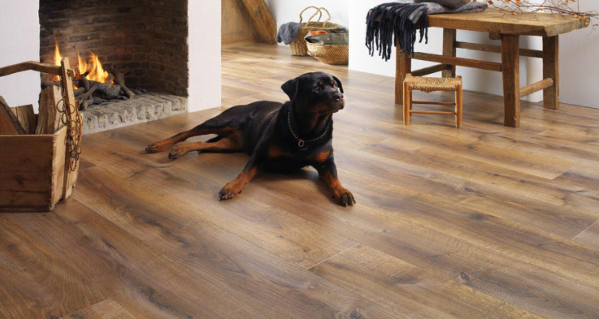 Pleie og vedlikehold av gulv i herdet eik, heltre, parkett og laminat